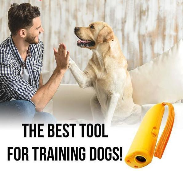 Still wondering why do dogs bark? Use this tool for training them not to bark.