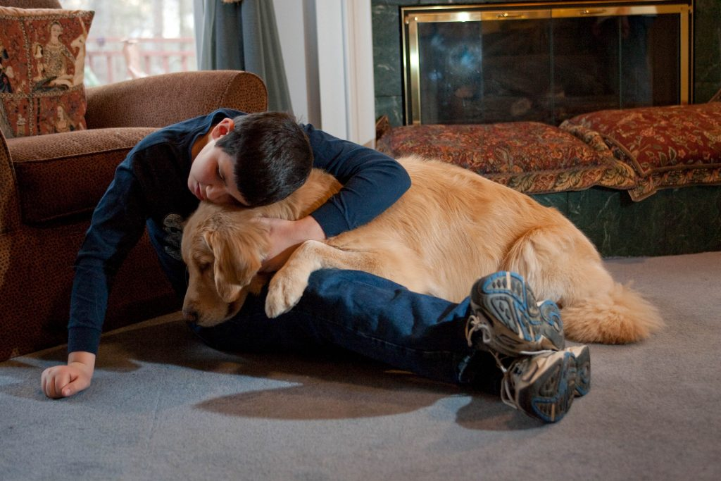 patient with his ESD . Emotional Support Dog Training