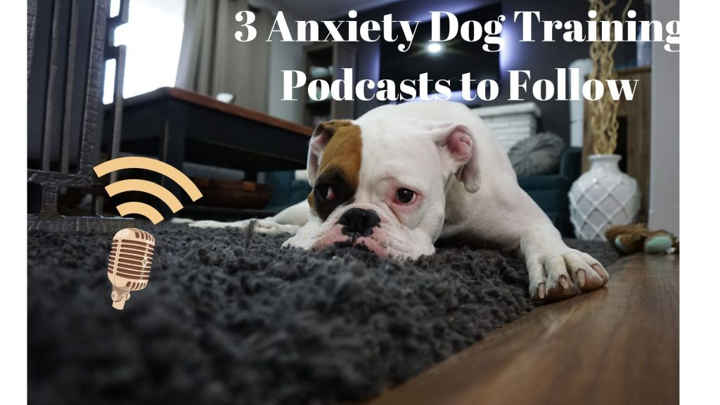 Anxiety Dog Training Podcasts