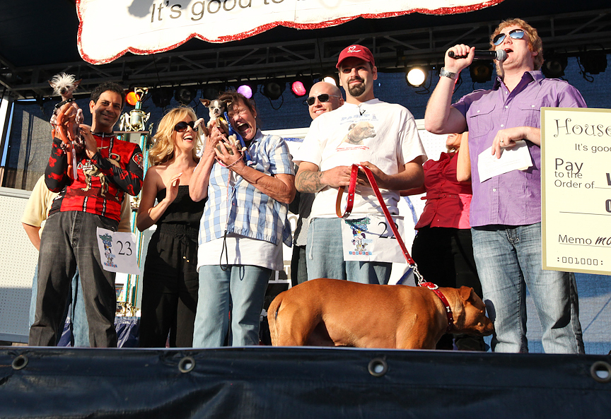 winners of the world's ugliest dog competition