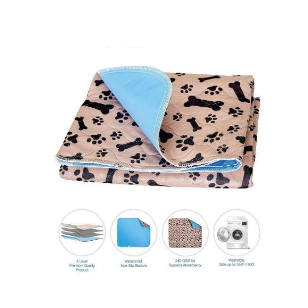 train dog to use pee pad store picture