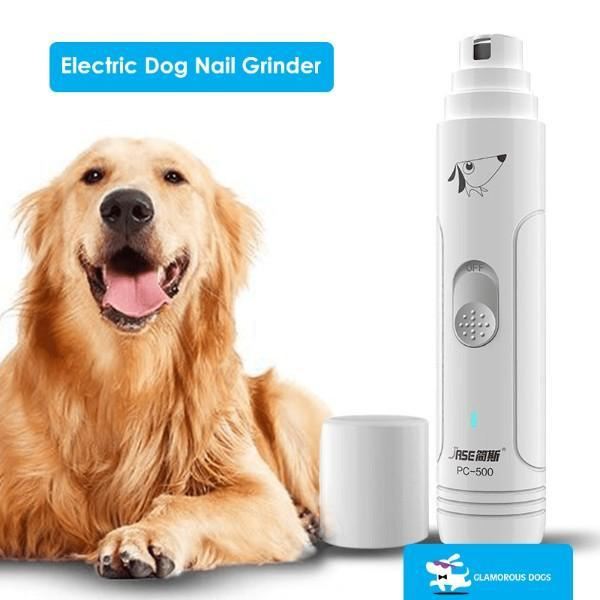 A dog just used the new Electric Dog Nail Grinder that will help him from the broken nail exposed quick