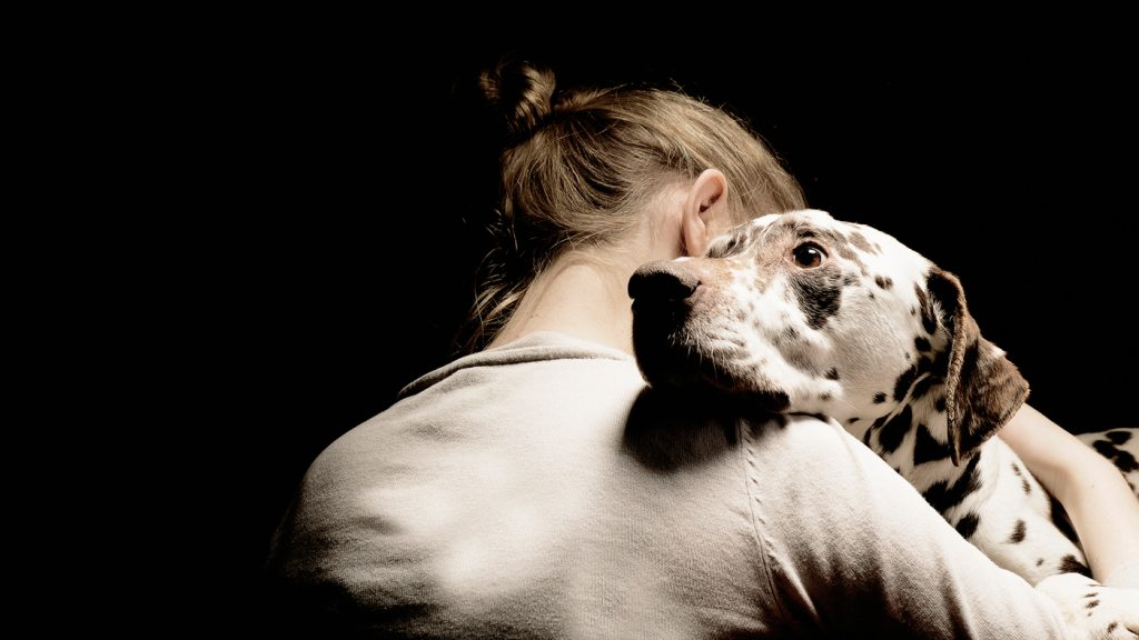 An ESD hugging his owner. Emotional Support Dog Training