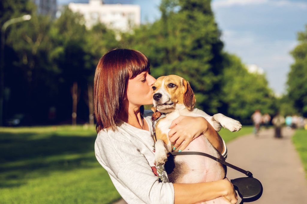 The Best Way to Potty Train a Dog in 15 Easy Steps |