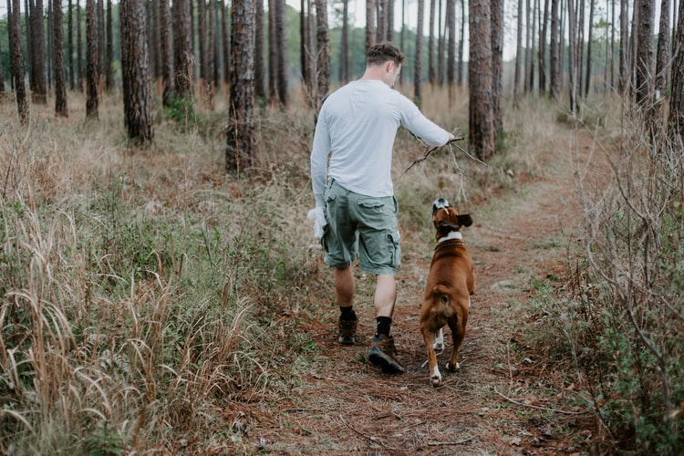 man with dog in a hike. How to Calm a Dog During Fireworks