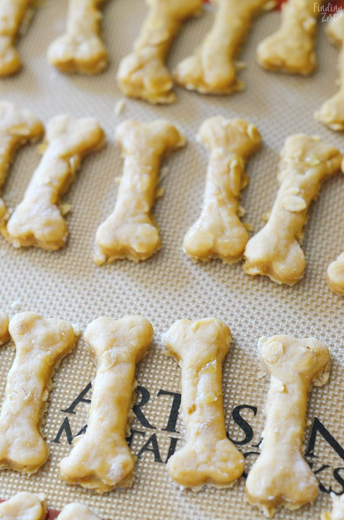 Top 13 Homemade Dog Treats That are Delicious for Your Dog |