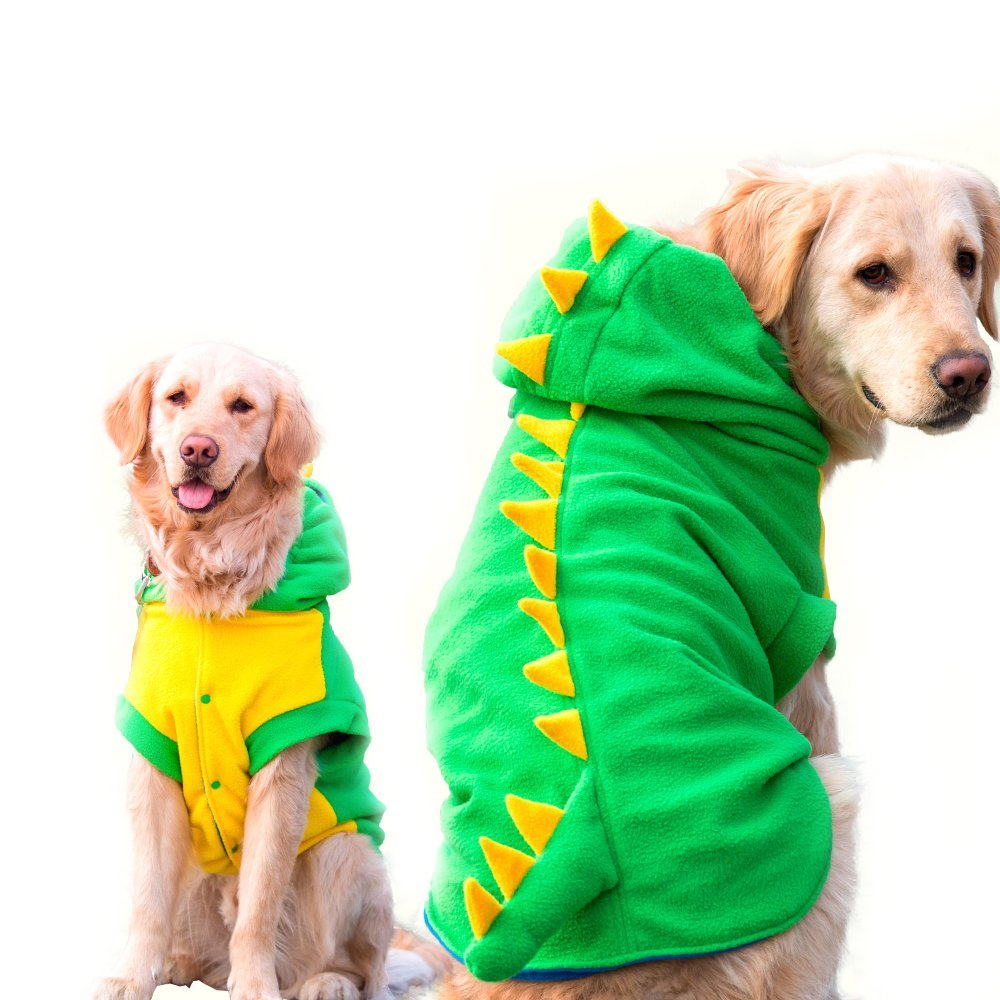 10 Tips for Choosing A Halloween Costume for Your Dog |
