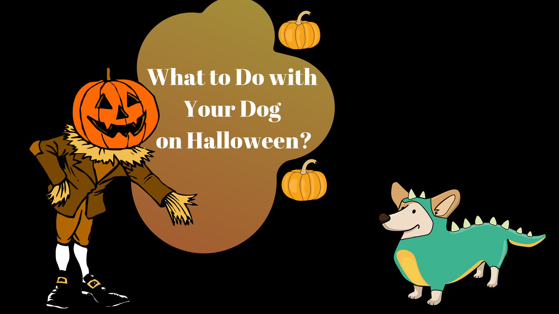 What to Do with Your Dog on Halloween