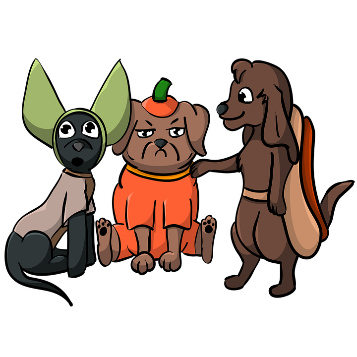 What to Do with Your Dog on Halloween- three dogs in their Halloween costumes