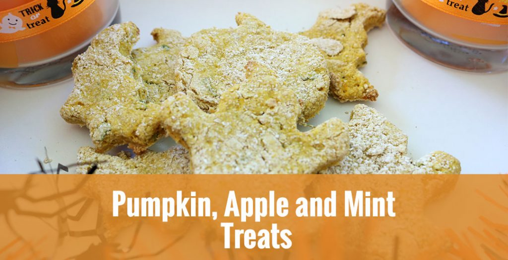 17+ DIY Halloween Dog Treats that Your Dog Will Love |