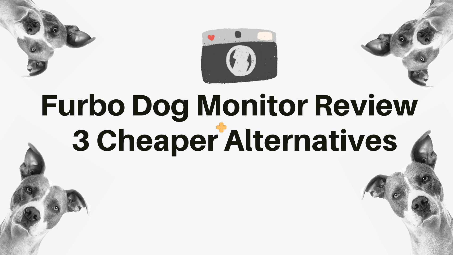 Furbo Dog Monitor Review + 3 Cheaper Alternatives
