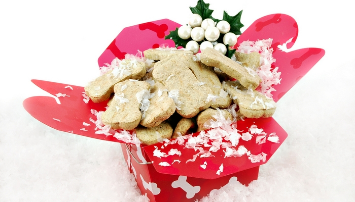 The Gingerbread Cookies for Dogs