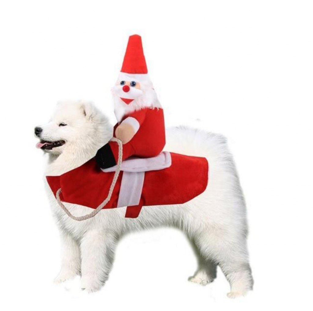 Small To Large Dog Christmas Costumes and Outfits |