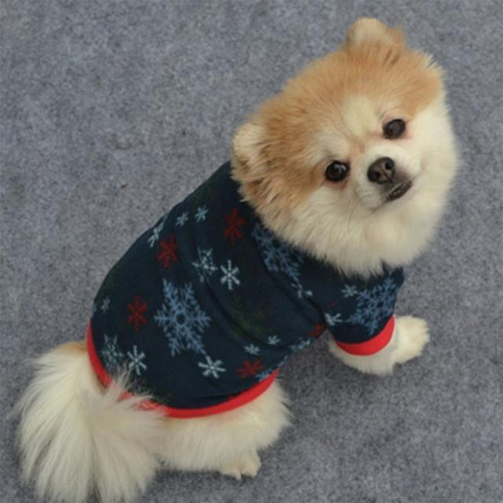 Ugly Christmas Sweaters for Dogs- A dog wearing the Puppy Christmas Sweater