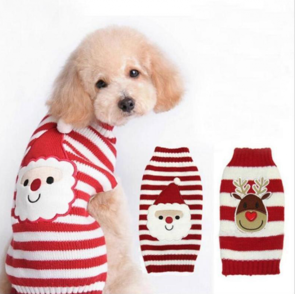 A dog wearing the The Santa Striped Dog Sweater