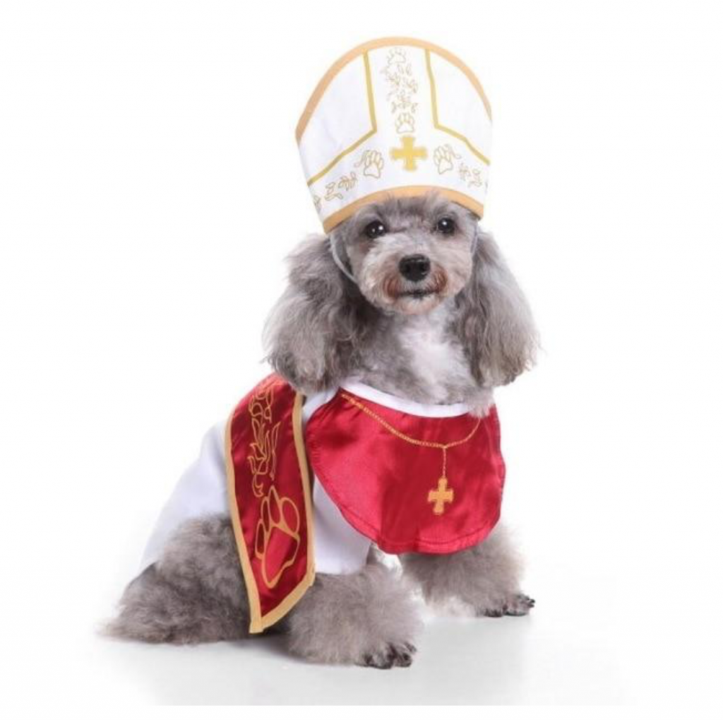 The Right Dog Costume for the Right Occasion-Don't Miss! |