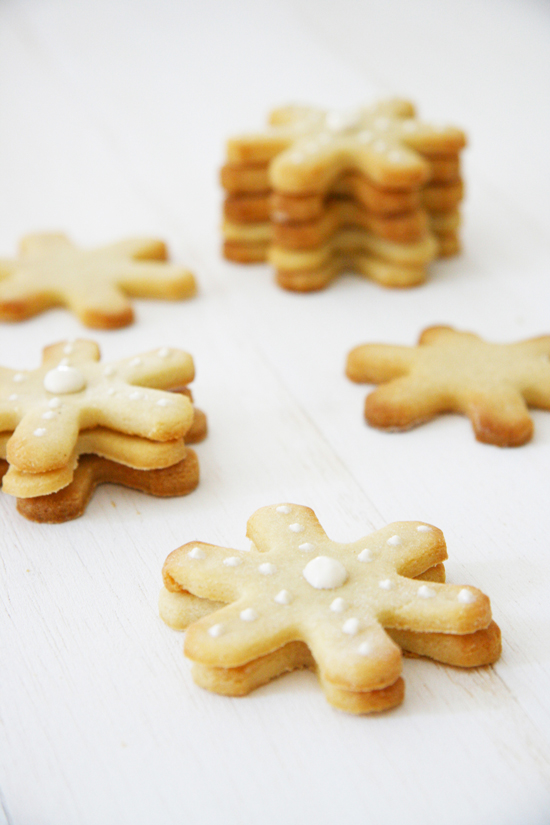 The Snowflake Cookies for Dogs