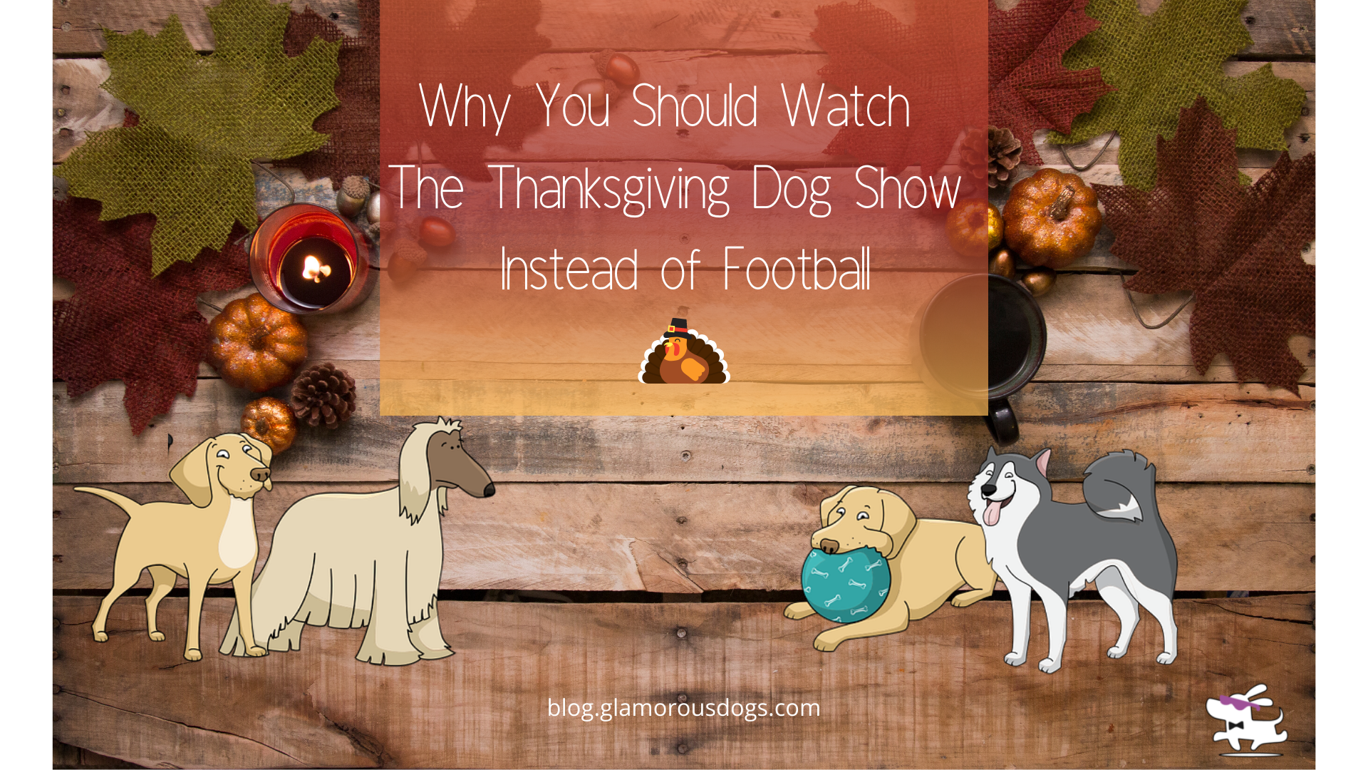 Why You Should Watch The Thanksgiving Dog Show Instead of Football