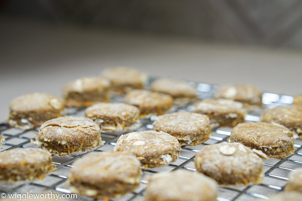 Carrot & Apple Cookies for Dogs