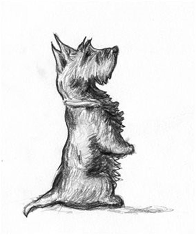 Why are more pets euthanized during the holidays?- A sketch of a dog standing on their legs