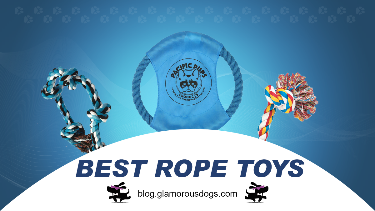 Top 5 Rope Toys for Dogs Who Really Want to Play |