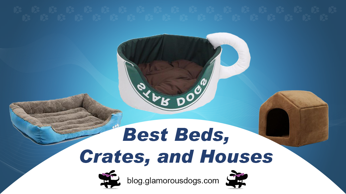 Beds, Crates, and Houses for Your Dog's Comfort |