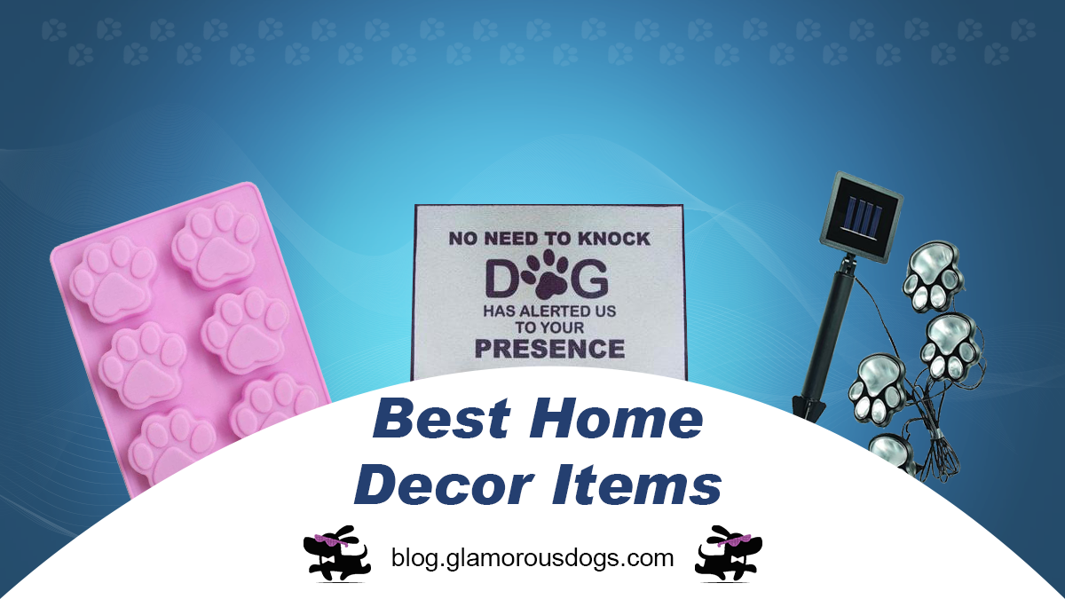 Best Home Decor Items for Dog Owners-Don't Miss! |