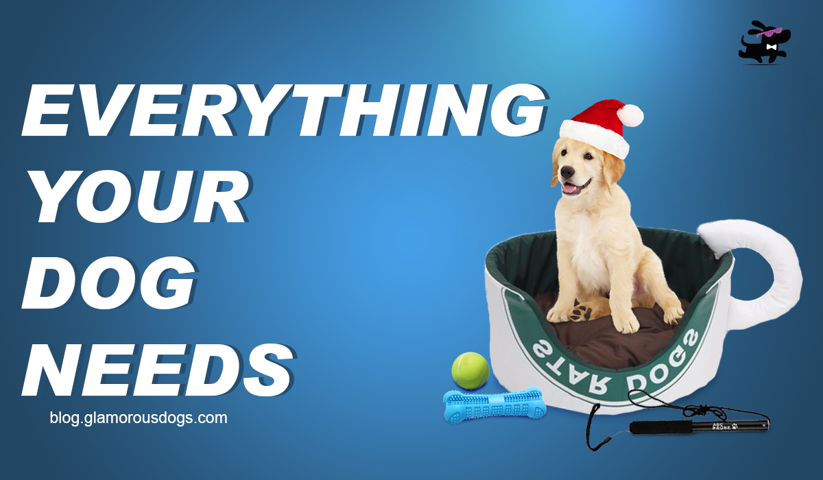 What Your Dog Needs |