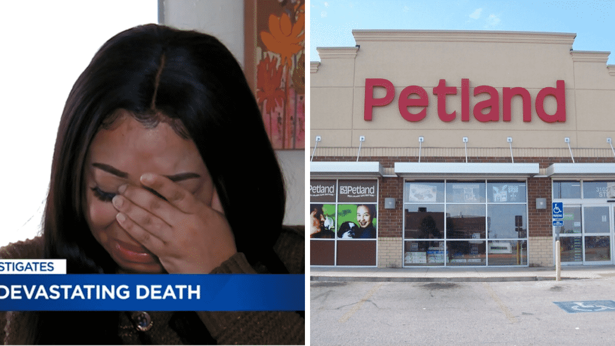 Woman Seeks To Warn Others After The Puppy She Bought For $8,000 From Petland Died Only Days Later |