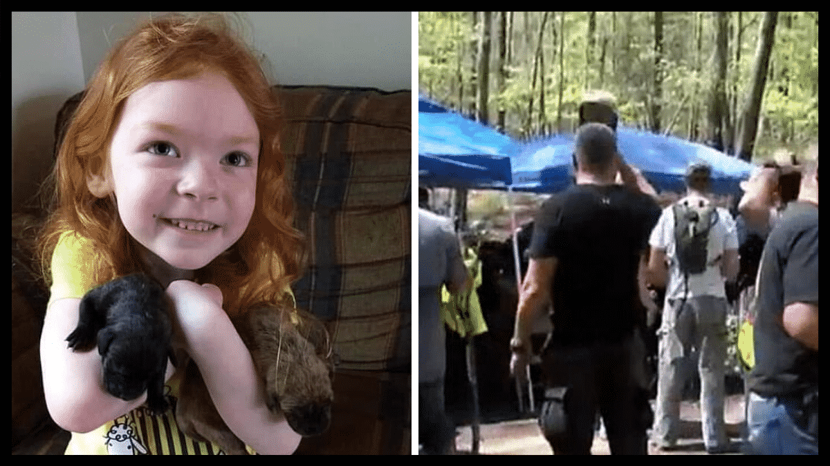 Hundreds Of Rescuers Go Searching For Missing Girl Until They Hear A Familiar Bark From The Woods |
