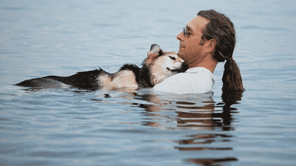 Heartwarming Photo of Arthritic German Shepherd Sleeping in His Dog Parent's Arms in the Lake Goes Viral |