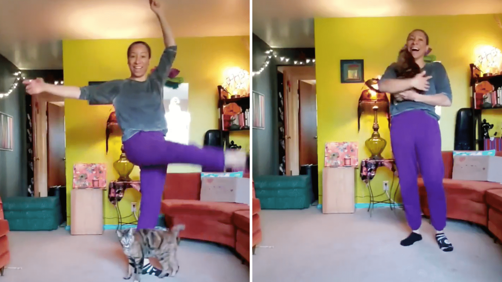 A Ballet Teacher Was Giving a Remote Dance Lesson, but Her Cat Decided to Steal the Show!
