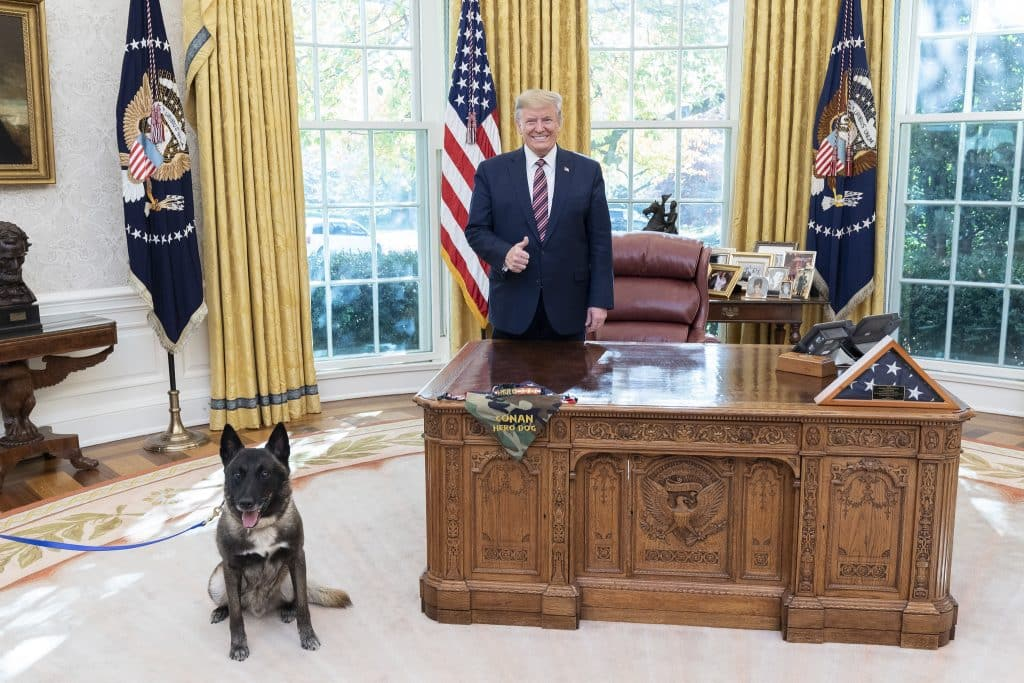Why Does Our President Hate Dogs? |