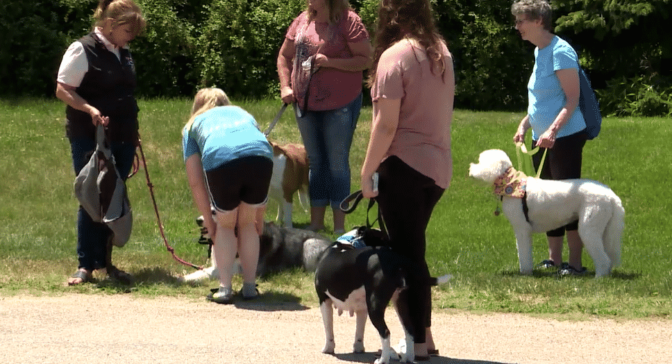 Town Comes Together For A Little Boy With a Dog Parade |