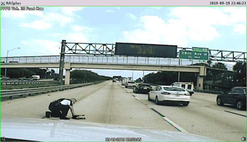 Officer Sees Dog Hit By a Car On Interstate, Risks His Life To Save The Dog |