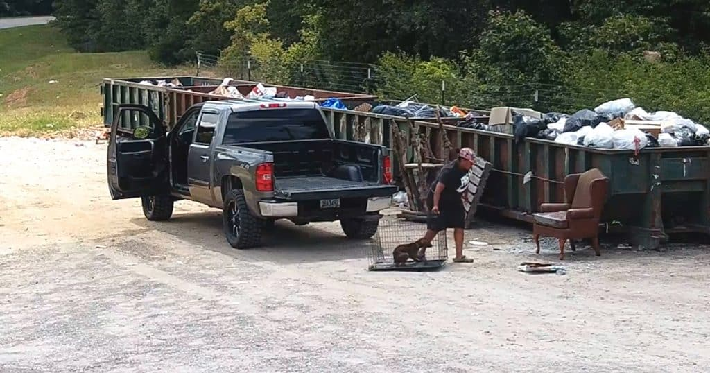 Woman Caught on Video Abandoning Dog in a Hot Crate Next to The Dumpsters |