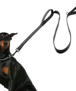 2 Handles Dog Leash Stunning Pets