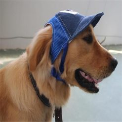 Adjustable Baseball Dog Hat |Best Gift for Dog Lovers August Test GlamorousDogs