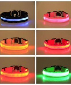 Adjustable LED Dog Collar to Keep Dogs Safe | ???? FREE ???? LED Collar Stunning Pets