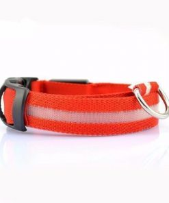Adjustable LED Dog Collar to Keep Dogs Safe | ???? FREE ???? LED Collar Stunning Pets Red L