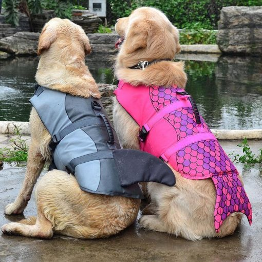 Amazing Dog Life Jacket Stunning Pets