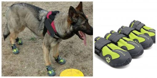 Amazing lightweight Breathable German Shepherd Dog Shoes GlamorousDogs