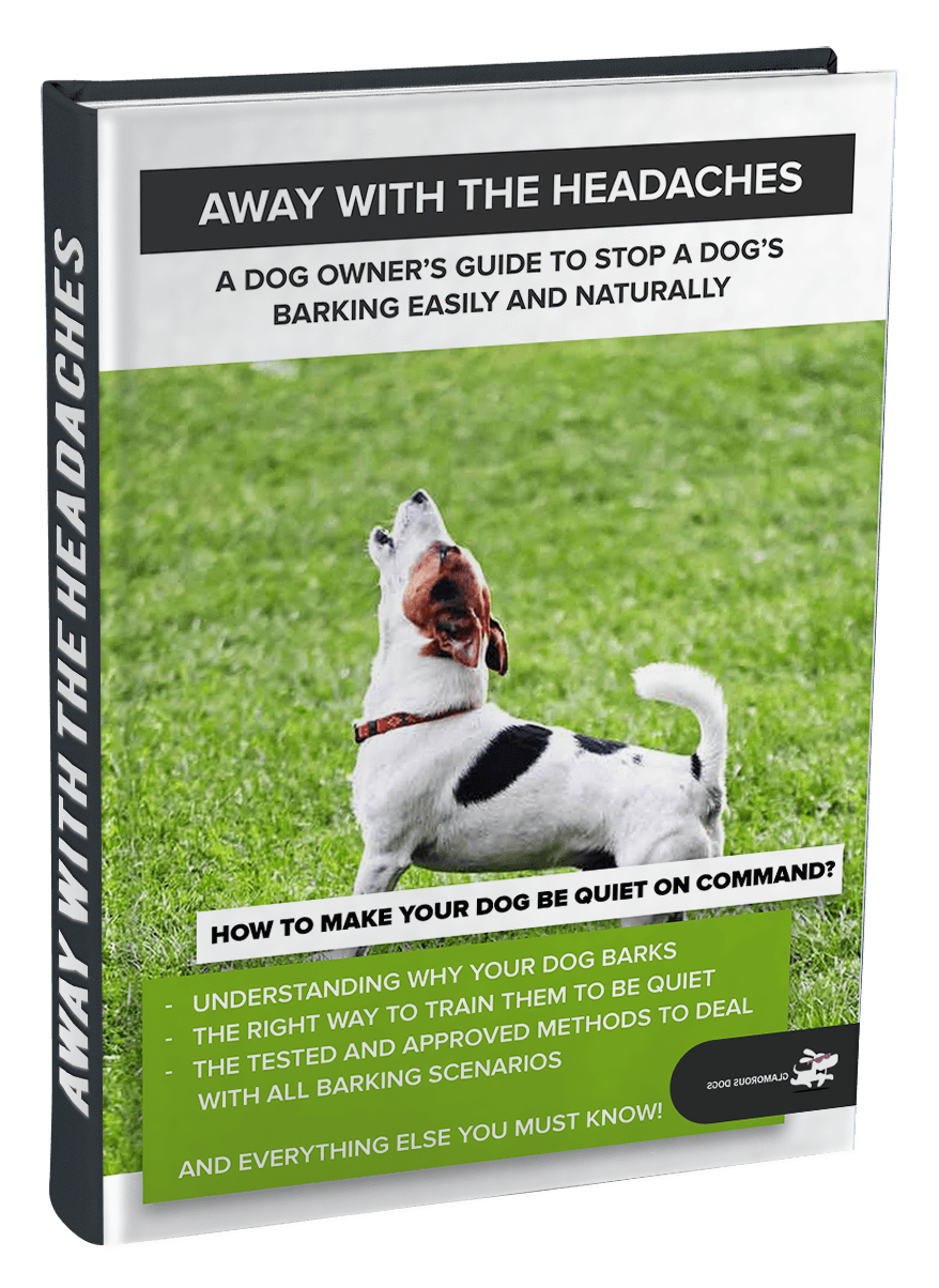Away With The Headaches! E-Book GlamorousDogs