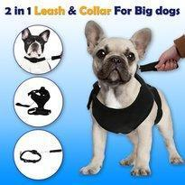 Best Retractable Dog Leash July Test GlamorousDogs