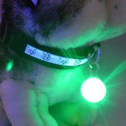 Bright Dog / Cat LED Night Safety Flash Light for Collars Stunning Pets