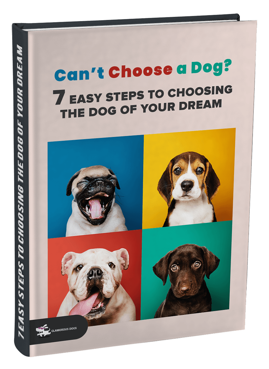 Can't Choose a Dog? 7 Easy Steps to Choosing the Dog of Your Dream E-Book Glamorous Dogs Shop - Glamorous Accessories for Your Dog + FREE SHIPPING