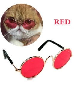 COOL™: Cool Sunglasses for Pets Sunglasses For Pets GlamorousDogs Small (Width 3.14
