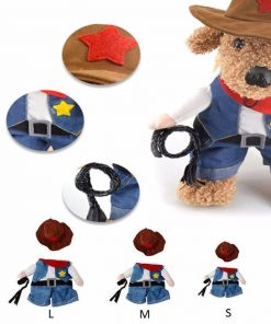 Cool Outfit for Small Pets Stunning Pets