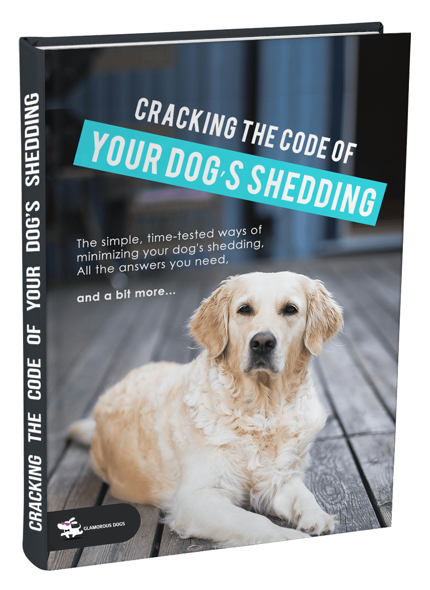 Cracking the Code of Your Dog's Shedding E-Book Glamorous Dogs Shop - Glamorous Accessories for Your Dog + FREE SHIPPING