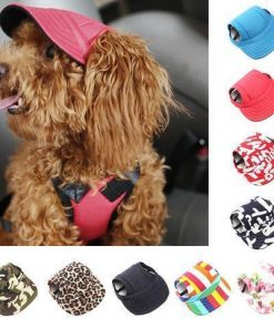 Dog Hats Stunning Pets